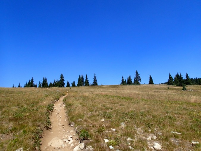 Perfection in the form of a trail.